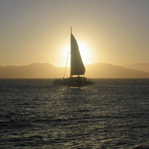 Scenic Catamaran Cruise in San Francisco
