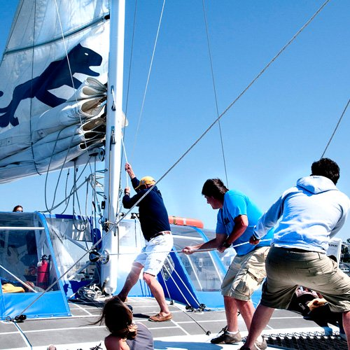 Hands on Sailing during San Francisco Catamaran Cruise