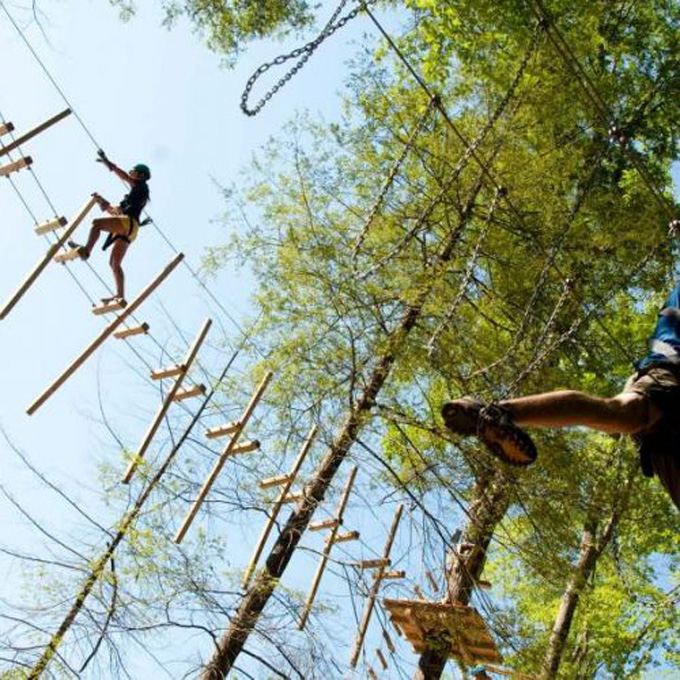 Obstacle Course in the Trees