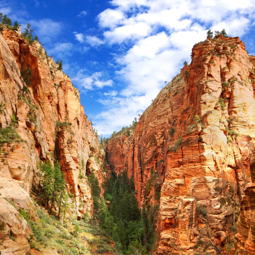 Multi Day National Parks Tour