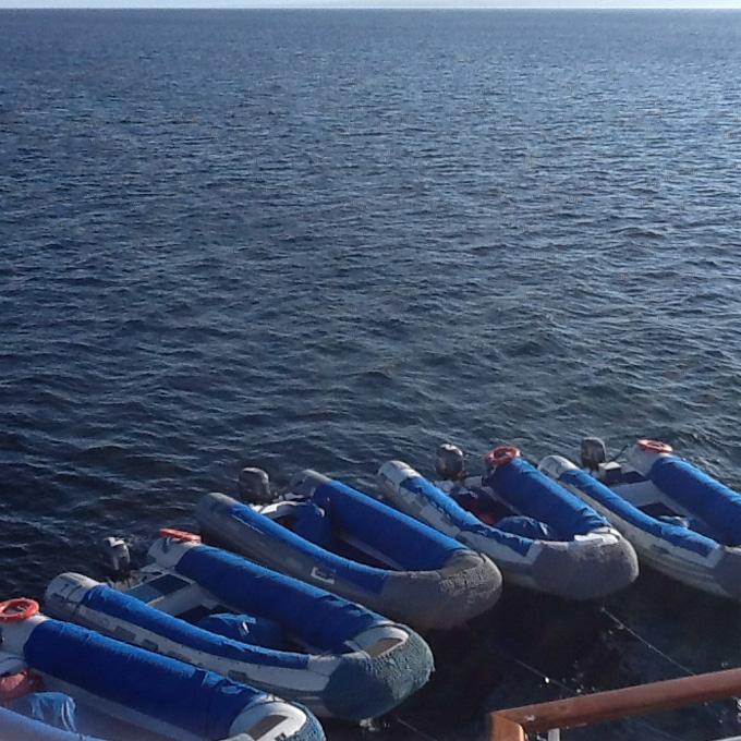 Ketchikan Boat Adventure