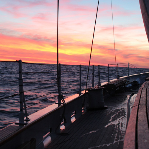 Sunset Sail in Florida