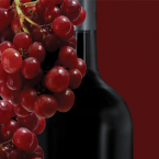 In-Home Wine Education Class in Chicago