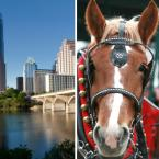 Carriage Tour in Austin at Lady Bird Lake