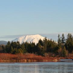 Explore Mt St Helens in Seattle