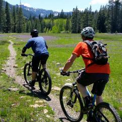 Guided Mountain Bike Tour near Truckee