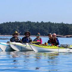 Group Griffin Bay Kayak Tour San Juan Island