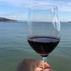 Food and Wine Tour in Sausalito