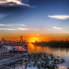 Airboat Safari at Night