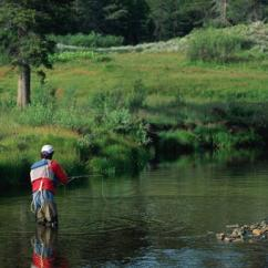 Private Fly Casting Instruction in Indianapolis