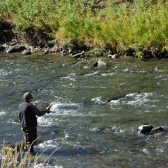 On-Stream Fly Fishing Class in Philadelphia