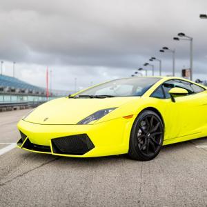 Race a Lamborghini Gallardo