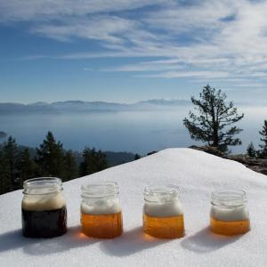 South Lake Tahoe Brewery Tour