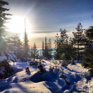 Guided Snowmobile Tour near Salt Lake City