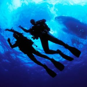 Scuba Certification in Detroit