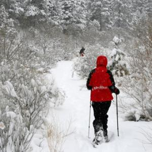 Snowshoeing Tour in Salt Lake City