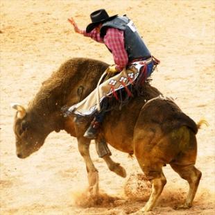 Bull Riding School in Kansas City