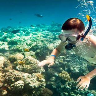Lanai Island Snorkeling