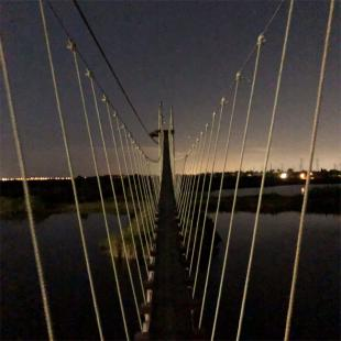 Suspension Bridge on Tour near Tampa
