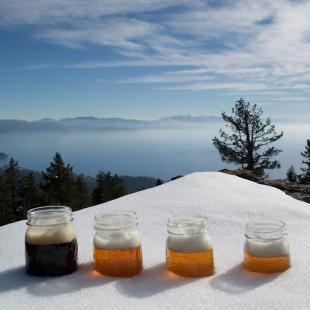 South Lake Tahoe Brewery Tour