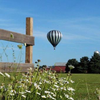 Private Hot Air Balloon Ride AIR-NJE-0009