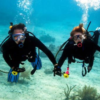 Scuba Dive in Oahu