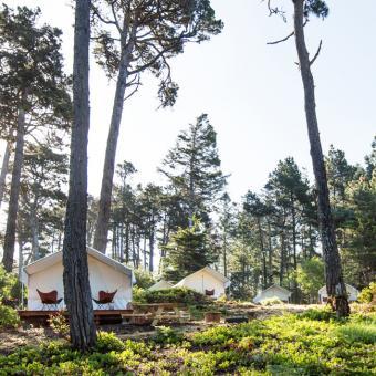 Safari Tents in California