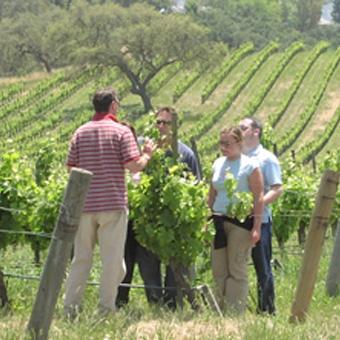 Private Back Country Wine Tour in Santa Barbara