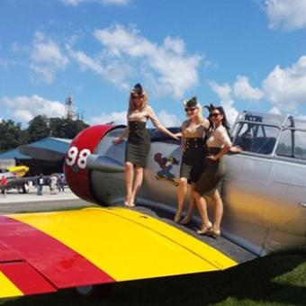 Fly in the Historic T-6 Warbird near New York