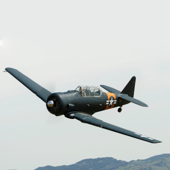 North American T6 Warbird