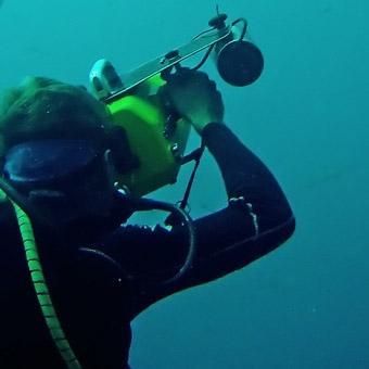 Underwater Digital Photography in Los Angeles