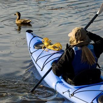 Tomales Bay Kayak Tour in San Francisco