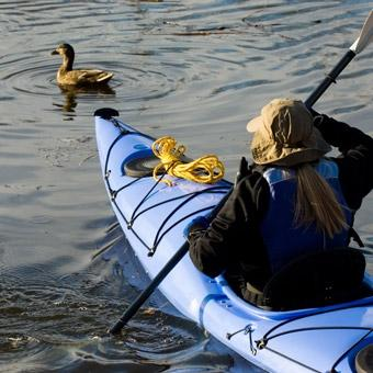 Tomales Bay Kayak Tour in San Jose