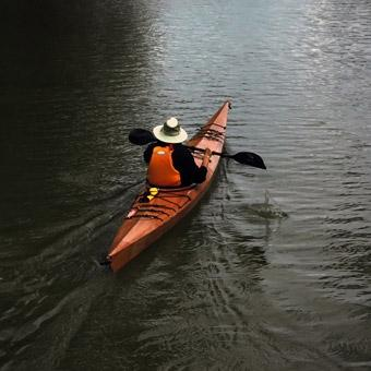 Blackwater Wildlife Refuge Paddle in Washington DC