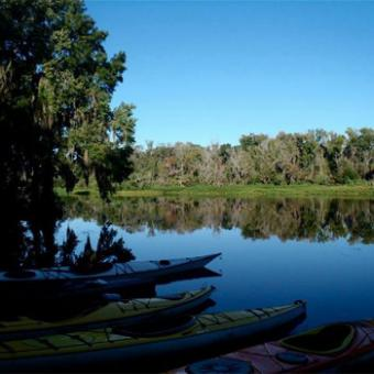River Kayak Tour near Jacksonville