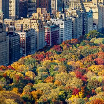 Fall Foliage Helicopter Tour