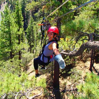 Canopy Tour near LA