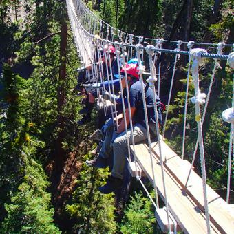 Guided Canopy Tour