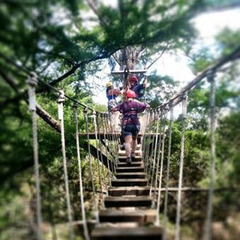 Zipline Canopy Tour near San Antonio