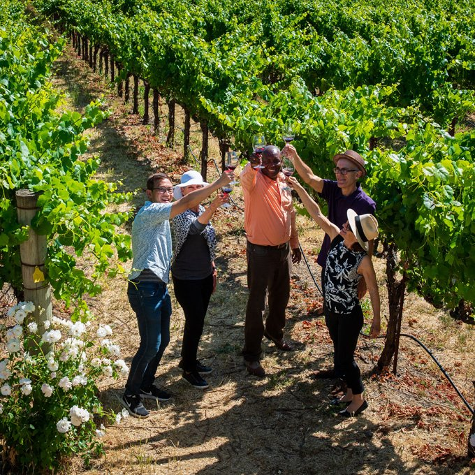 Sip Your Way Through Wine Country
