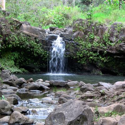 Freshwater Pools on Maui