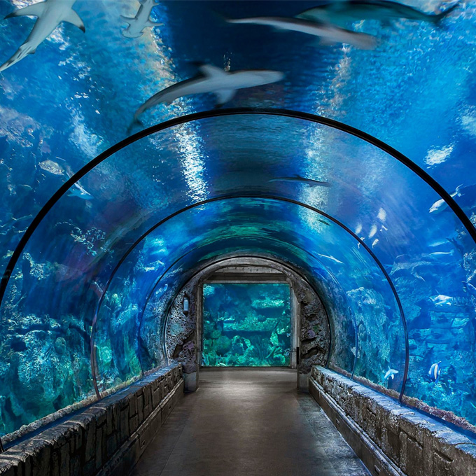 Tour Mandalay Bay Aquarium
