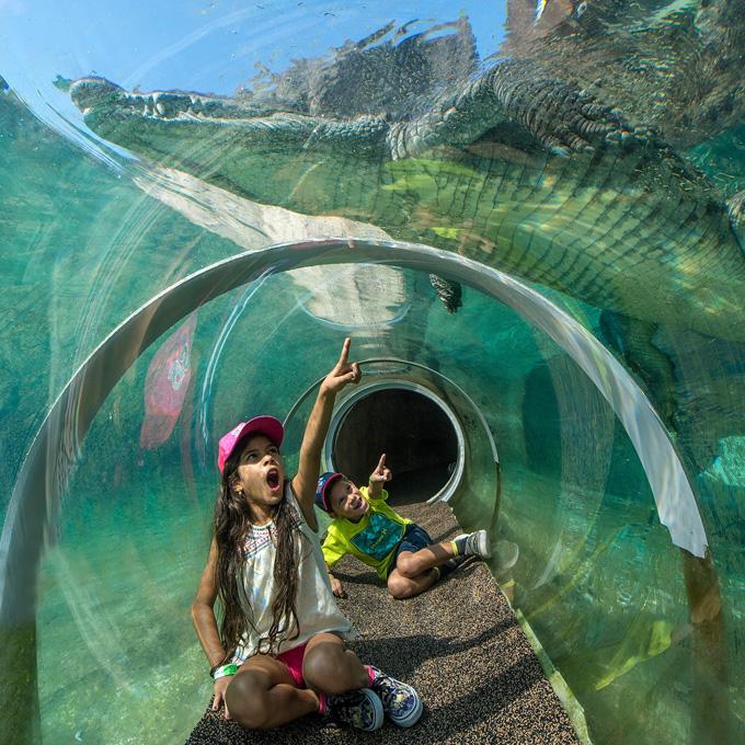Visit the Miami Zoo