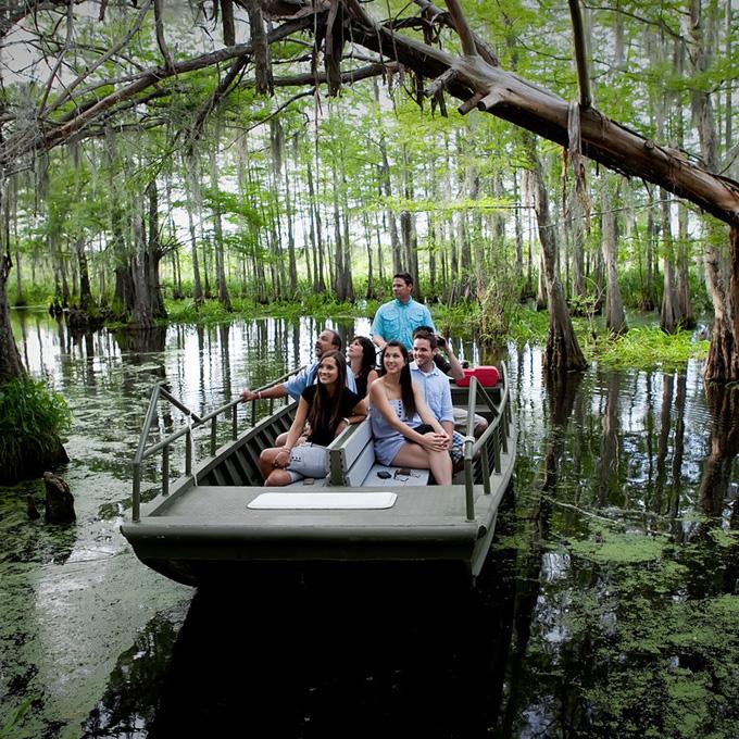 Boat Tour in Louisiana