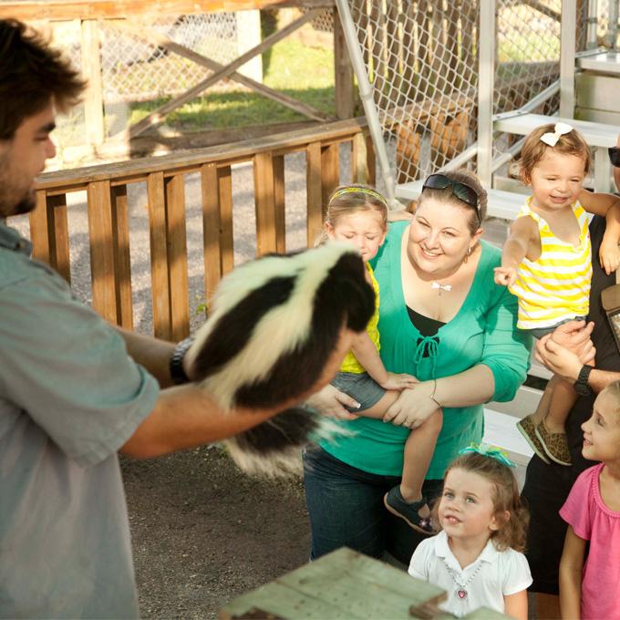 Tour the Sawgrass Recreation Park