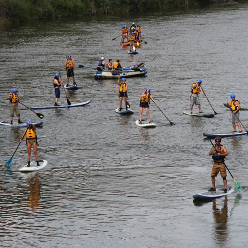 Group Paddleboarding in the Colorado River