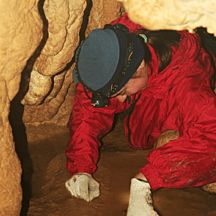 Wild Caving Tour (for 6+) in Nashville