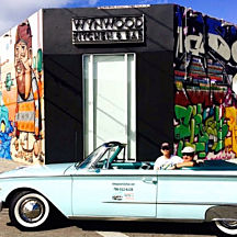 Wynwood District and Miami Beach Tour