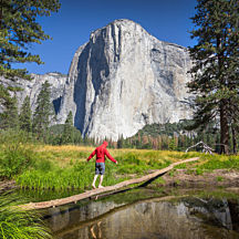Yosemite National Park Tour in San Francisco