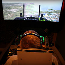 Fighter Pilot flight Simulator near Tampa